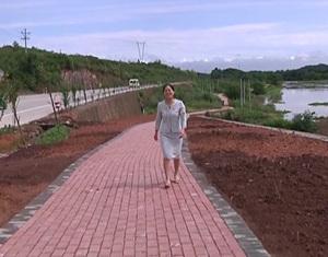 """武义建起20公里休闲""""绿道"""""""