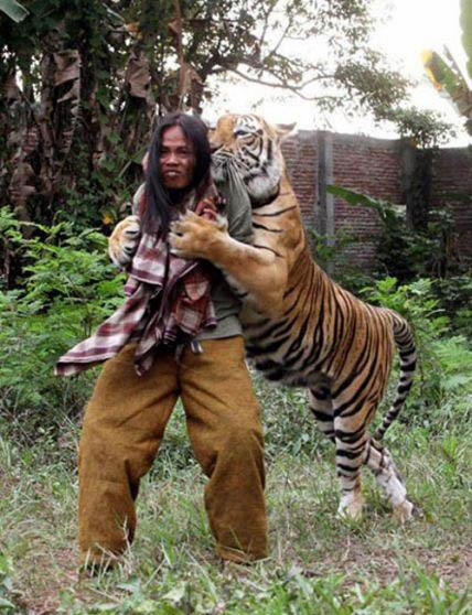 少年派中的老虎叫什么