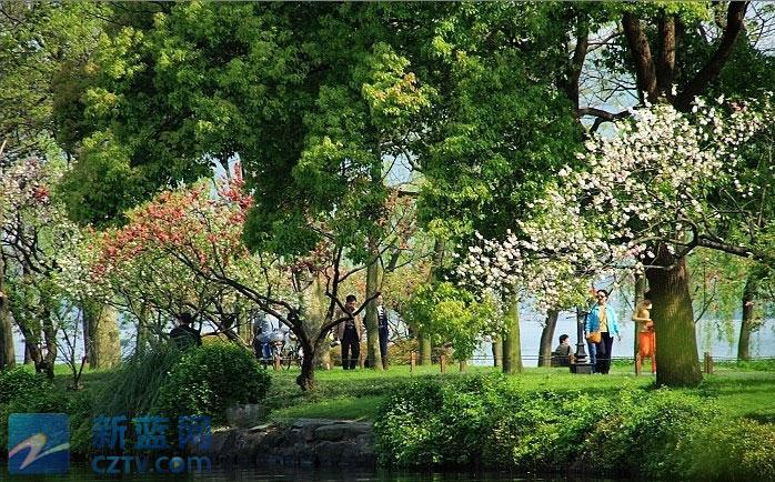西湖苏堤杭州