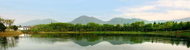 浙江最美乡村评选——杭州市江干区丁桥镇皋城村