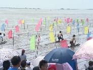 第四届温州泥巴节开幕(龙湾2013-06-19)