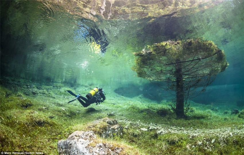 限时参观的澳大利亚水下公园