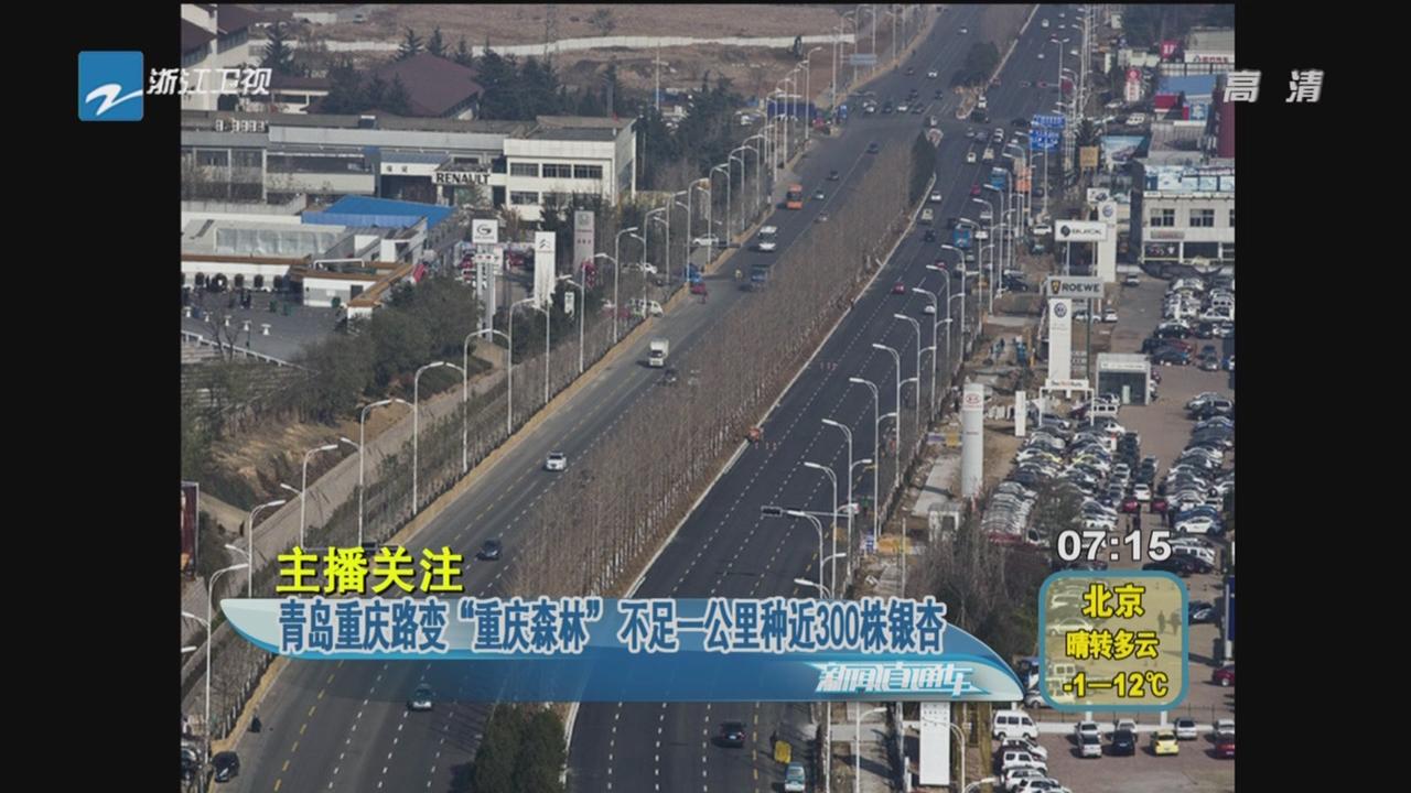 """主播关注:青岛重庆路变""""重庆森林"""" 不足一公里种近300"""