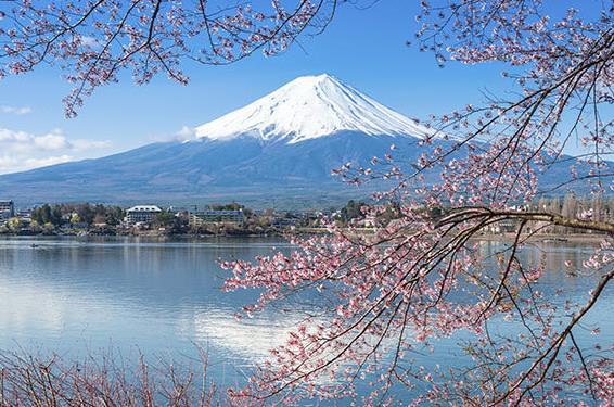 寻找春季五大实惠旅行地 品日本樱花之美
