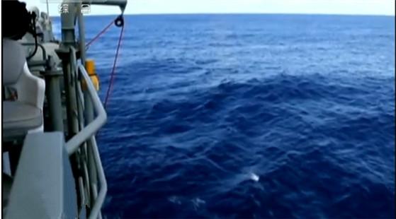 藍鰭金槍魚探測器首批數據已被分析 暫無發現