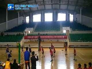 【平湖市】小学生排球比赛