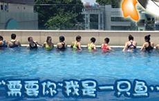 【漫慢黑】女足露天泳池集体秀泳装