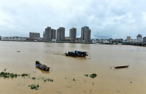 浙江強降雨致局部受災較嚴重