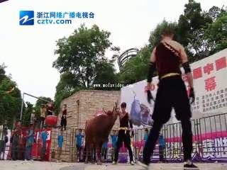 【南湖区】《2014第三届中国掼牛争霸赛》