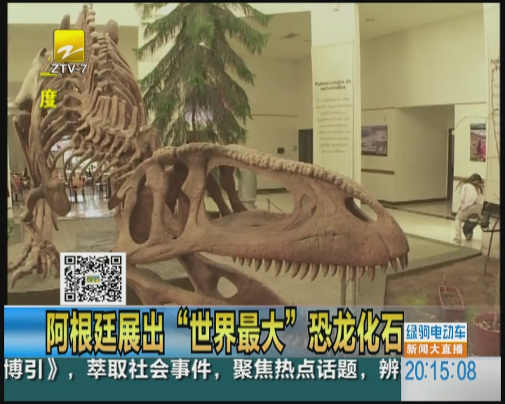 """阿根廷展出""""世界最大""""恐龙化石"""