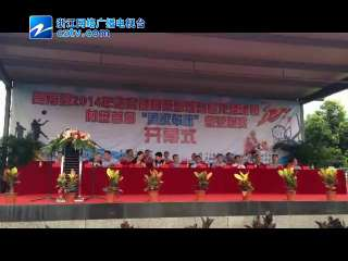 【苍南县】首届村级篮球赛举行