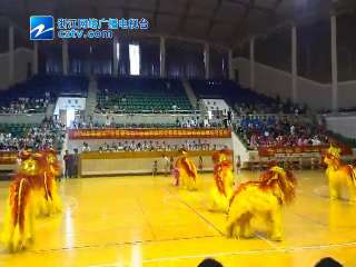【平湖市】2014民族民间传统体育项目展示