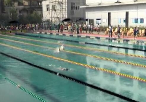 【遂昌县】2014年丽水市青少年游泳锦标赛