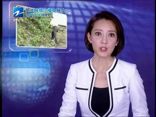 【台州市】温岭退休老教师义务修山路 方便村民健身