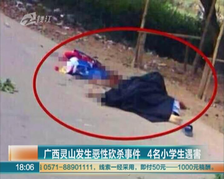 杭州市上牌摇号网站_