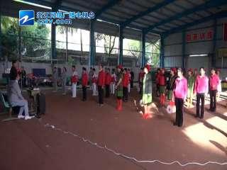 【临海市】老年柔力球展示大会