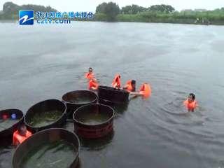 【德清县】新安水上运动会