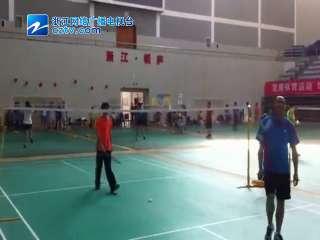 【桐庐县】开发区运动会羽毛球比赛
