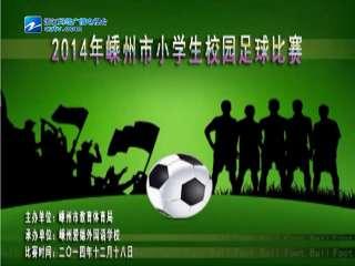 【嵊州市】举行2014年嵊州市小学生校园足球比赛