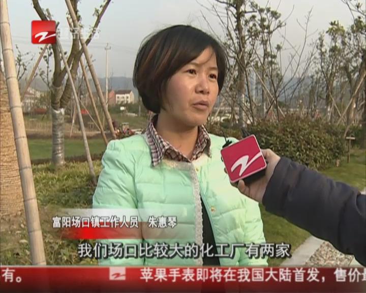 """富阳土豪招""""上门婿""""  送豪车赠家族产业?"""