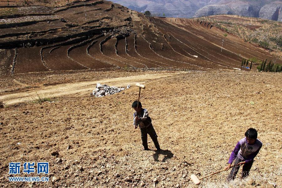 #(生态)(3)贵州西部局地发生春旱 41万余人临时饮水困难