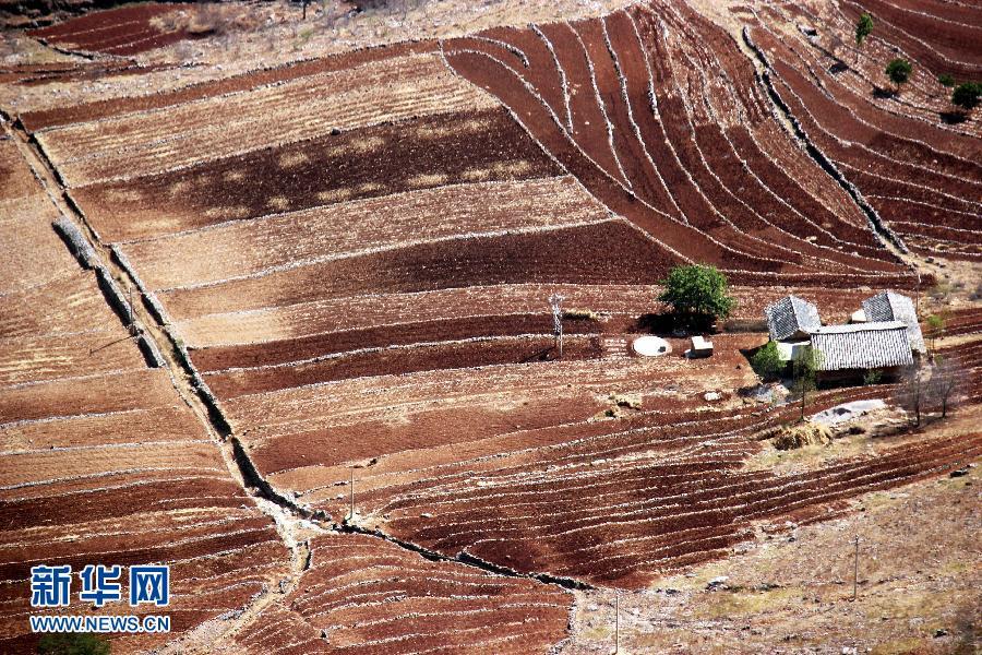#(生态)(4)贵州西部局地发生春旱 41万余人临时饮水困难