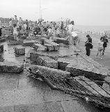 巨大的冲击力下,堤坝石块成了碎块。 通讯员 王洁 摄