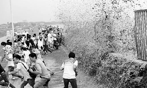 一个大潮打来,在下沙段看潮的游客四下跑散。 本报记者 吴元峰 摄