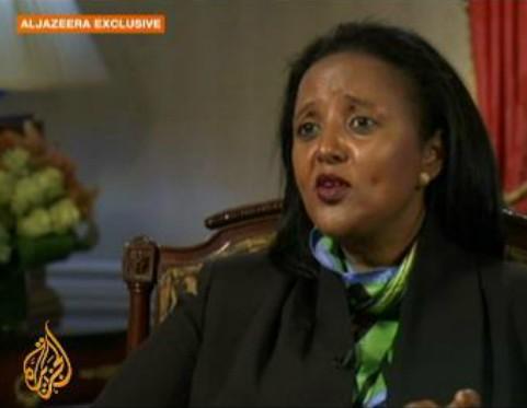 肯尼亚外长称基地组织应对购物中心袭击案负责