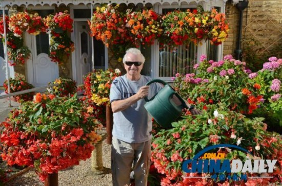 英国74岁盲人种植鲜艳花卉靠触觉和嗅觉做园艺
