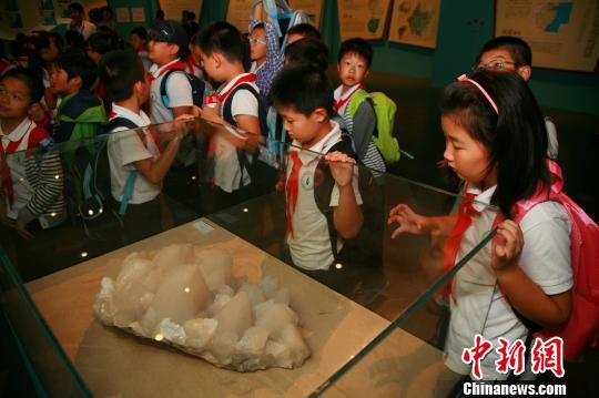 图为:《浙江大地十亿年》展览中奇特的岩石标本引发学生的兴趣。 李晨韵 摄