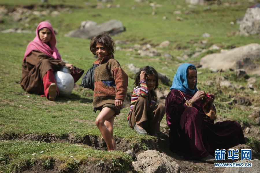 (国际)(4)山上的生活——走近印控克什米尔山区的游牧居民