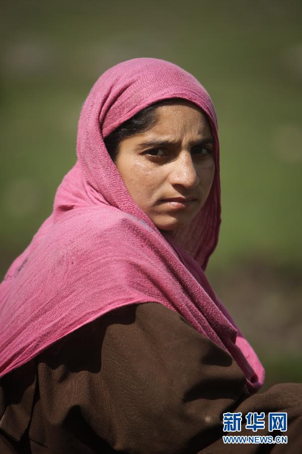 (国际)(5)山上的生活——走近印控克什米尔山区的游牧居民