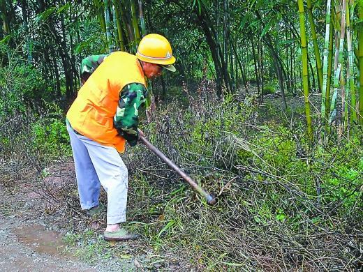 如今,板桥镇欧家坝村62岁的李世学仍走在护路的路上