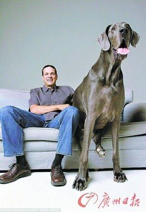世界最高大狗去世 站立高度达2.2米体重222斤