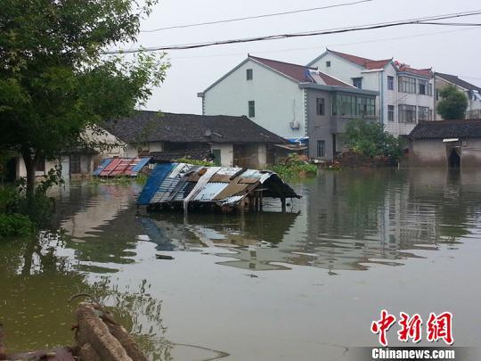 9日,在余姚农村拍摄的照片。 徐小勇 摄