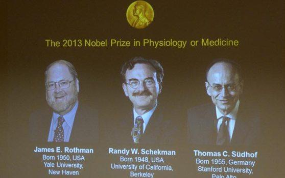 美德两国科学家共享2013诺贝尔生理学或医学奖