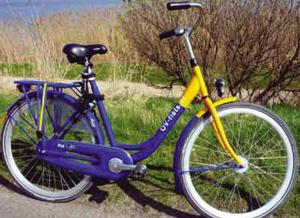 荷兰的公共自行车