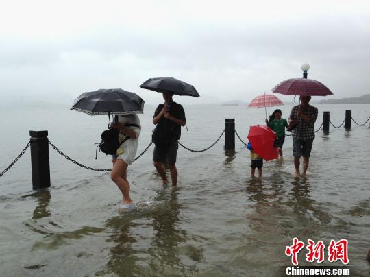 游客们在西湖边戏水。 邵思翊 摄