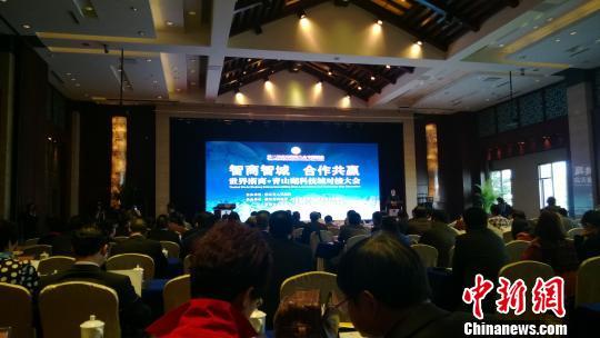 图为:世界浙商青山湖科技城对接大会现场。 张骏 摄