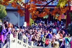 昨天的香山依然游客爆满。首席摄影记者 蔡代征/摄