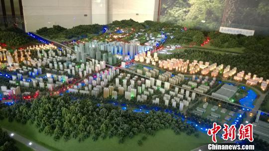 图为:青山湖科技城核心区块沙盘。 张骏 摄