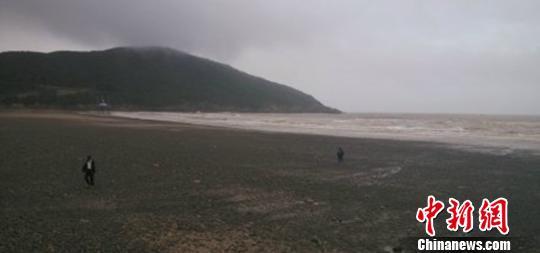 """图为台风过境后的舟山东沙海滩。 网友""""黑犬片"""" 摄"""