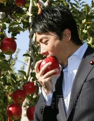 日本前首相小泉之子赴福岛视察在果园品尝苹果