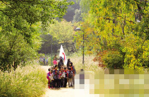 江洋畈公园,树叶变黄,正是学生秋游的好季节。