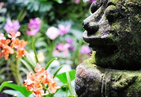 甜蜜升级 新加坡7大最浪漫旅行地