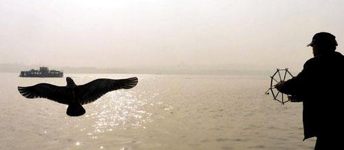 11月4日,一位老人在西湖白堤上放风筝。 新华社记者王颂摄