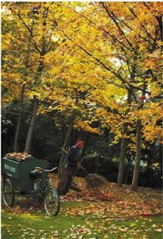 八咏公园的环卫工在清扫落叶。