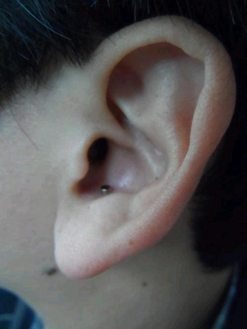 图为通过照片成像传送托业答案时使用的直径仅为2毫米的超小型入耳式耳麦。作弊者依靠此装置获得正确答案。(韩联社图片)