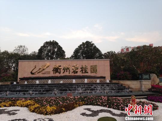 碧桂园衢州项目钜惠被指欺诈全国多地曾曝虚假宣传